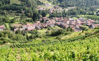 Visite de Massiac et dégustation de vins